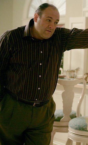 "James Gandolfini as Tony Soprano on The Sopranos (Episode 6.12: ""Kaisha"")"