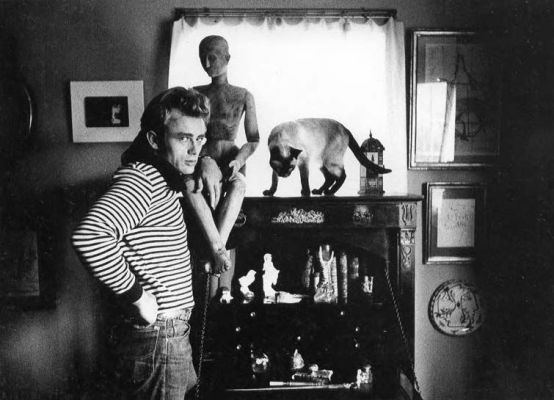 James Dean, photographed by Sanford Roth, 1955.