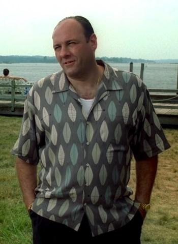 """James Gandolfini as Tony Soprano on The Sopranos (Episode 4.13: """"Whitecaps"""")"""