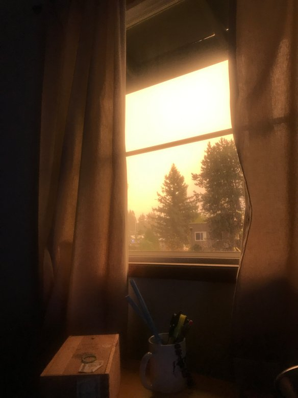 A curtained window taken near sunset. The lighting and color is intensely golden-yellow, inside and outside.