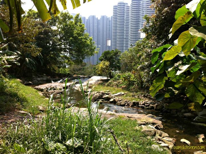 Hong Kong_Hikes_IMG_1200