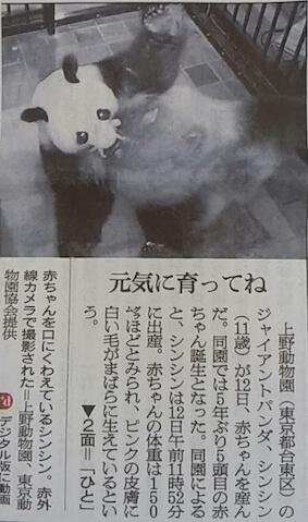 シンシンの出産を伝える朝日新聞1面(2017年6月)