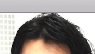 境界線調整ブラシで髪の毛と背景をなぞると、髪の毛に沿って選択範囲が作成される
