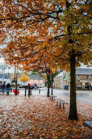 Autumn in Callander.