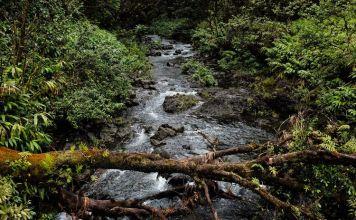 conservacion y reciclaje del agua