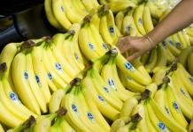 exportaciones banano