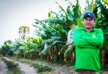 trabajador banano ecuador