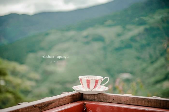 嘉義阿里山琴咖啡軒:阿里山雲海秘境,達邦部落高山咖啡館飲一杯手沖