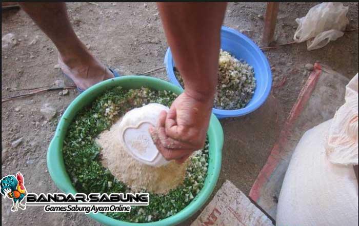 13 Cara Membuat Pakan Ternak Ayam Organik - ArenaHewan.com
