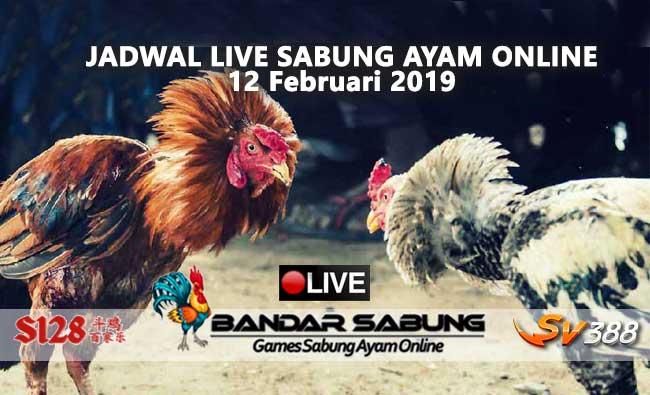 jadwal sabung ayam online s128 dan sv388 12 februari 2019