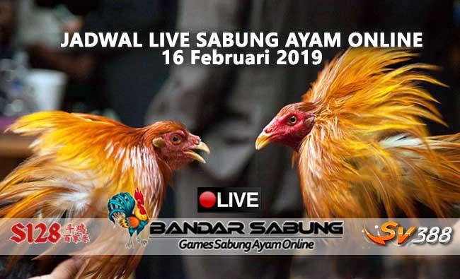 jadwal sabung ayam online s128 dan sv388 16 februari 2019