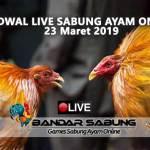 Jadwal Sabung Ayam Online S128 Dan SV388 23 Maret 2019