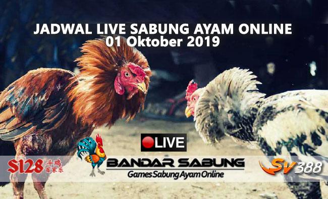 Jadwal Sabung Ayam Online S128 Dan SV388 01 Oktober 2019