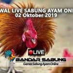 Jadwal Sabung Ayam Online S128 Dan SV388 02 Oktober 2019