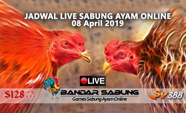 jadwal sabung ayam online s128 dan sv388 05 april 2019