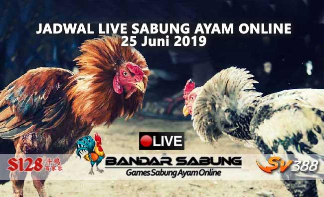 Jadwal Sabung Ayam Online S128 Dan SV388 25 Juni 2019