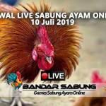 Jadwal Sabung Ayam Online S128 Dan SV388 10 Juli 2019