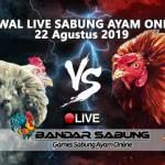 Jadwal Sabung Ayam Online S128 Dan SV388 22 Agustus 2019
