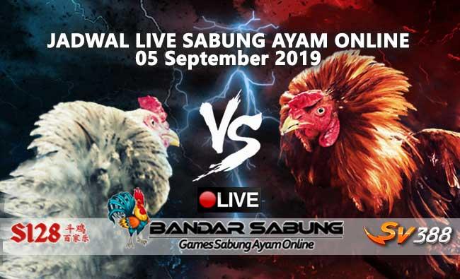 Jadwal Sabung Ayam Online S128 Dan SV388 05 September 2019