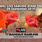 Jadwal Sabung Ayam Online S128 Dan SV388 09 September 2019