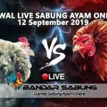 Jadwal Sabung Ayam Online S128 Dan SV388 12 September 2019