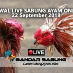 Jadwal Sabung Ayam Online S128 Dan SV388 22 September 2019