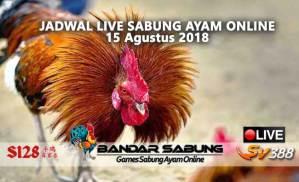 Jadwal Sabung Ayam Online S128 Dan SV388 15 Agustus 2018