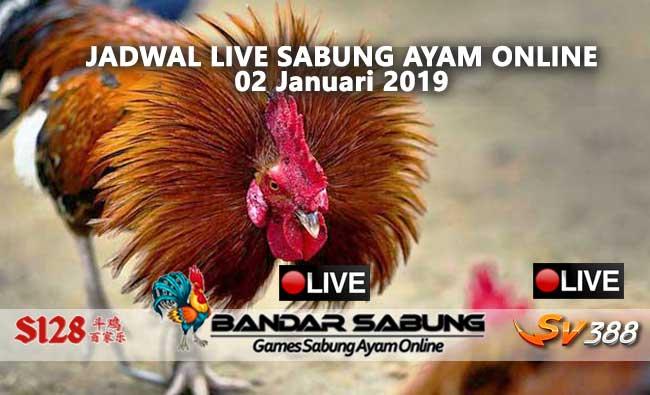 jadwal sabung ayam online s128 dan sv388 02 januari 2019