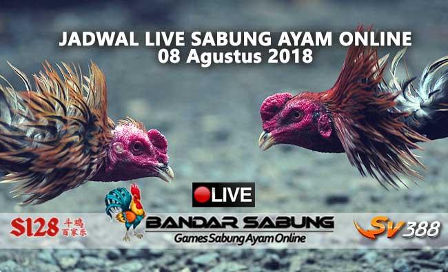 Jadwal Sabung Ayam Online S128 Dan SV388 08 Agustus 2018