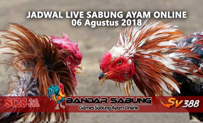Jadwal Sabung Ayam Online S128 Dan SV388 06 Agustus 2018
