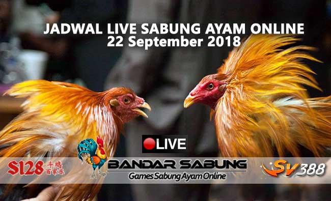 jadwal sabung ayam online s128 dan sv388 21 september 2018