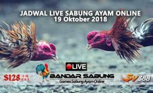 jadwal sabung ayam online s128 dan sv388 19 oktober 2018