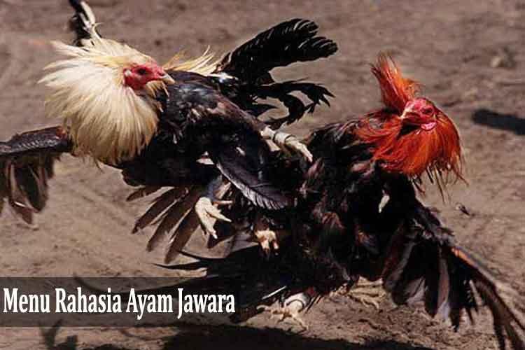 Inilah Menu Rahasia Ayam Jawara