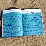 Baleia Areia 2