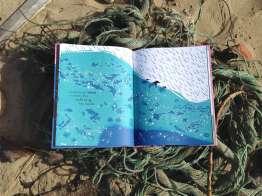 Baleia Cordas 3