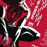 Spider-Man_Vol_2_1_Cho_Variant