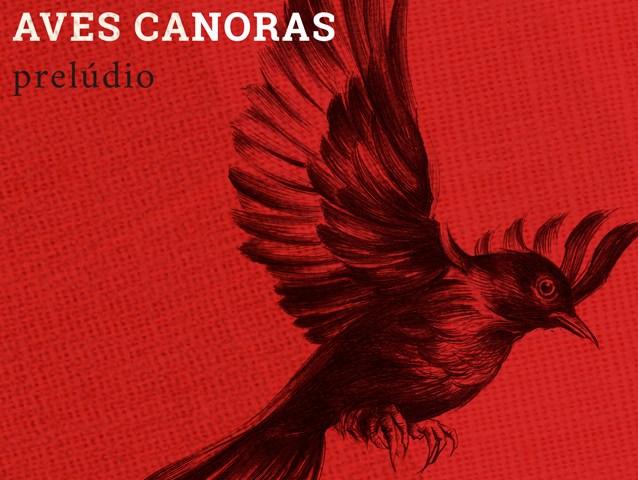 A Cortina das Aves Canoras: Prelúdio