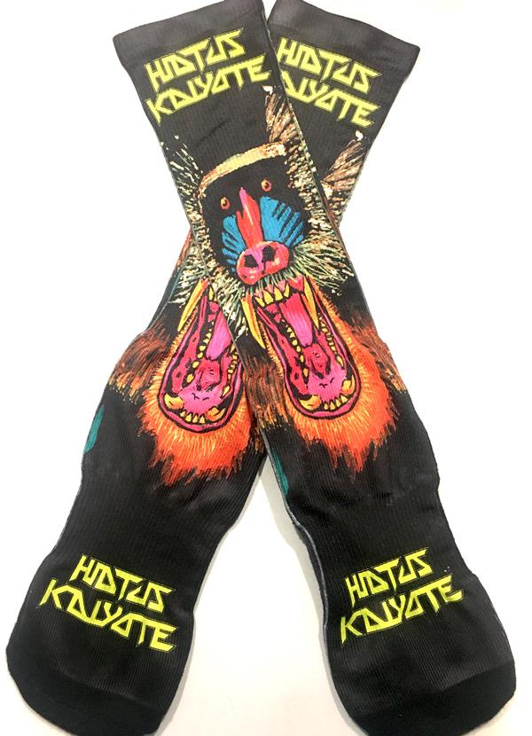 Hiatus Kaiyote Socks