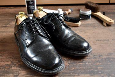 REGAL 2504を半年履き込んだ結果を報告|経年変化とレビューと靴磨き