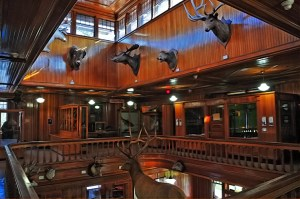 Banff Park Museum: a great place to go when looking for things to do in Banff Canada