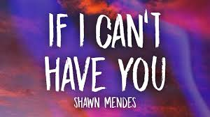 If I Can't Have You Lyrics - Shawn Mendes