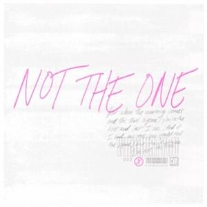 Not The One Full Song Lyrics - Stages - WhoHurtYou