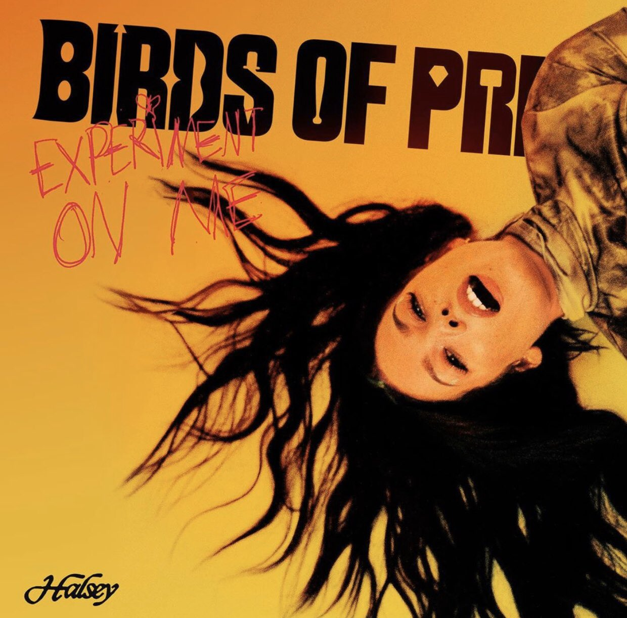 Experiment-on-Me-Lyrics-Song-Birds-of-Prey-The-Album-Various-Artists-Halsey