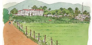valley resort araku