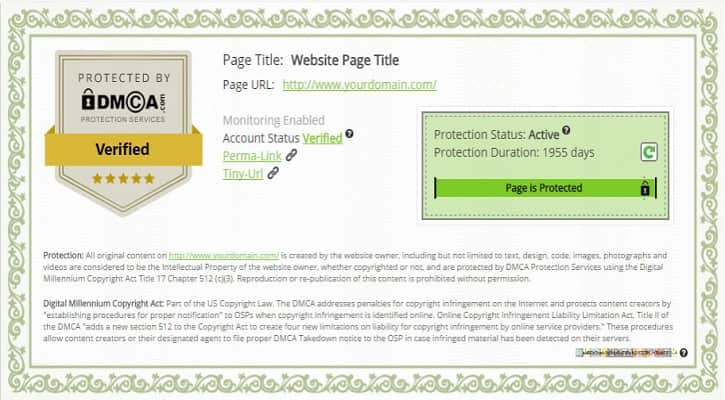DMCA protection কি