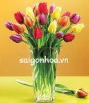 bình hoa tulip mẫu 5