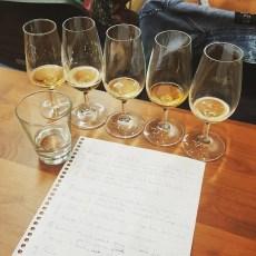 Degustação de Cerveja – Parte 2 de 3