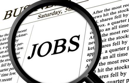 Rata şomajului în SUA a scăzut în luna mai la 13,3%, faţă de nivelul-record înregistrat în aprilie. Totodată au fost create 2,5 milioane de locuri de muncă