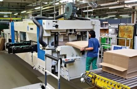 Austriecii de la Prinzhorn au ajuns la afaceri de 30 mil. euro cu producătorul de ambalaje din carton Dunapack. În 2018, Dunapack a cumpărat un teren de 11,5 hectare în localitatea Bolintin-Deal din apropiere de Bucureşti, pentru o fabrică de ambalaje de carton