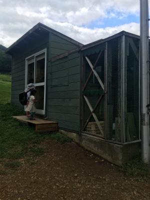 ウサギ小屋1